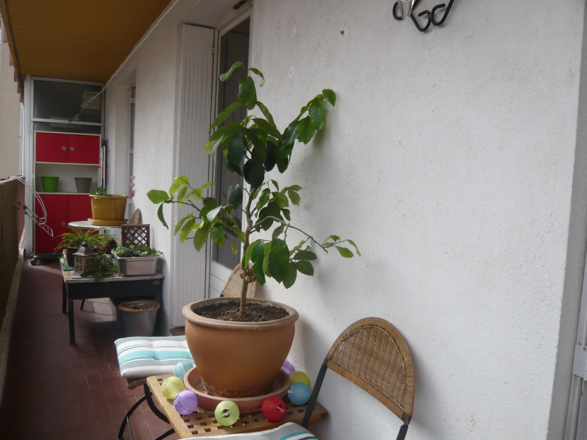 Ventes appartement t2 f2 marseille 07 quartier saint for Vente t2 marseille